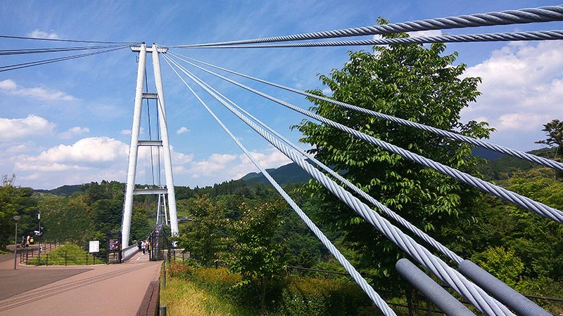 九重夢大吊橋を支えるワイヤー