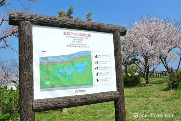 アメンボ公園
