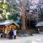 八神殿 須賀神社