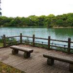 西南杜の湖畔公園 湖を眺めるベンチ
