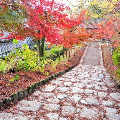 福岡県秋月の紅葉