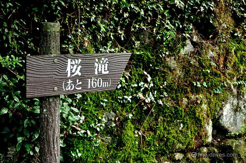 桜滝まであと160m