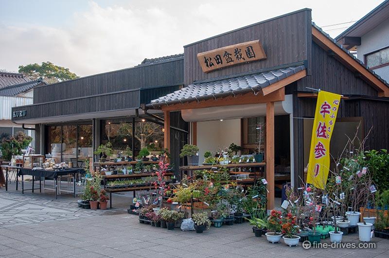松田盆栽園