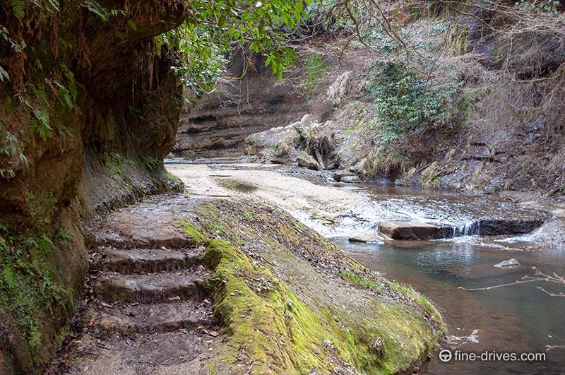 写真 東椎屋の滝への道中